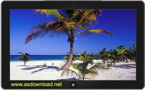 دانلود تم مکزیکو برای ویندوز 8