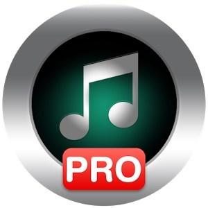 دانلود Allmusic Music Player Pro 1.21 – موزیک پلیر گرافیکی اندروید
