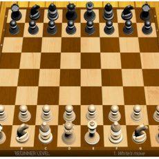 5 Chess