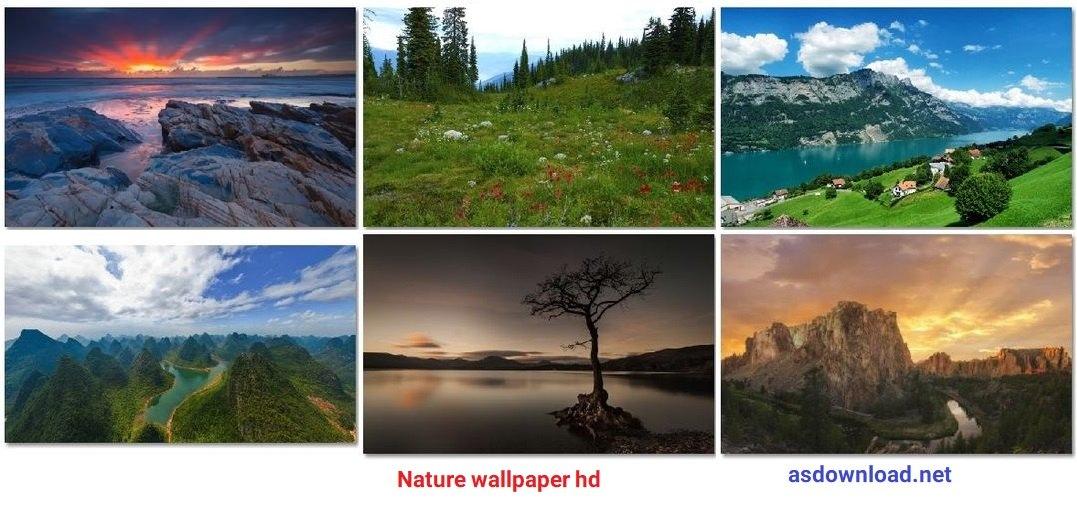 Desktop wallpapers Nature