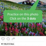 1 Repost for Instagram Regrann