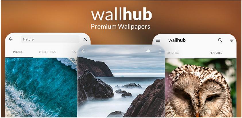 Wallhub 1