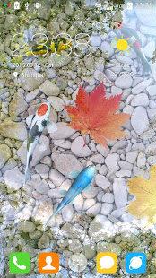 Water Garden Live Wallpaper 4