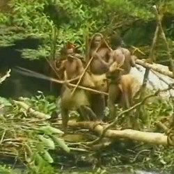 Photo of دانلود فیلم مستند انسان های اولیه واقعی در پاپوآ گینه نو