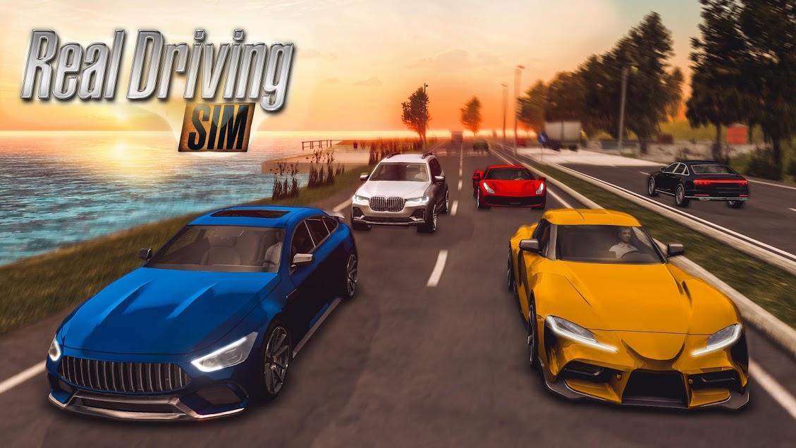Real Driving Sim 1