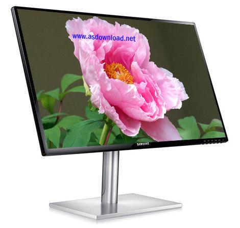 دانلود تم گل پونه برای ویندوز 8- Peony Windows 8 Theme