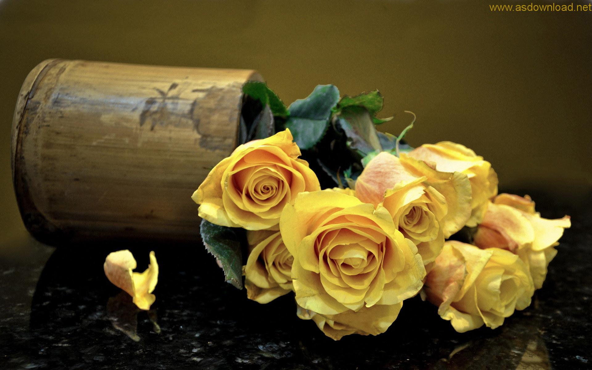 نتیجه تصویری برای دانلود والپیپر گل