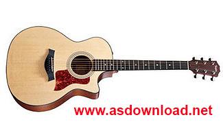 song guitar