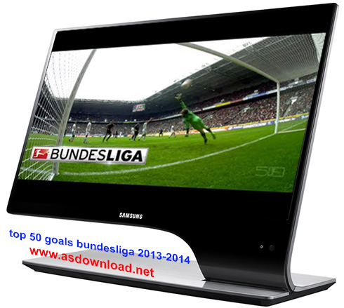 top 50 goals bundesliga 2013-2014